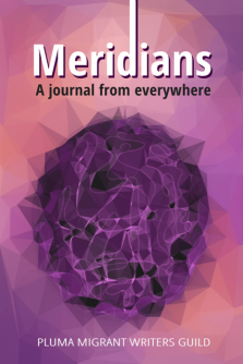 Meridians: A journal from everywhere (front cover) by Pluma Migrant Writers