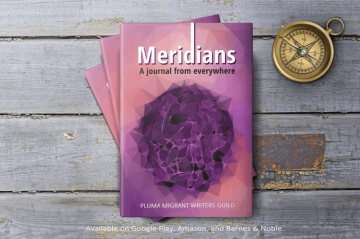 Meridians-a-Journal-from-everywhere-ad-banner